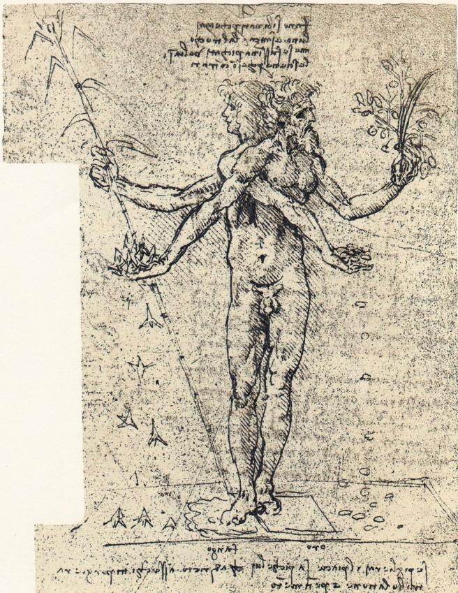 Leonardo_da_Vinci_-_unknown_drawing_of_androgyn_corpus_with_two_heads.jpg